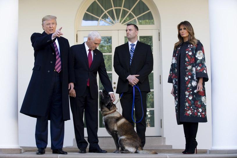 Prezydent Donald Trump, wiceprezydent Mike Pence, pierwsza dama Melania Trump i wojskowa suka o imieniu Conan. /MICHAEL REYNOLDS    /PAP/EPA