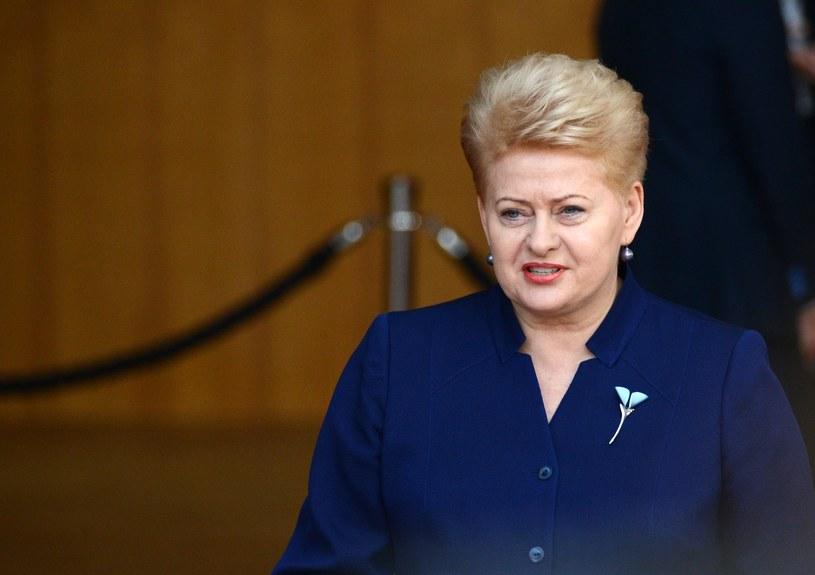 Prezydent Litwy Dalia Grybauskaite /Alexey Vitvitsky/SPUTNIK Russia /East News