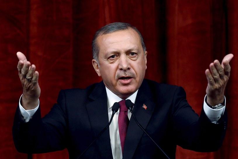 Prezydent Turcji /Kayhan Ozer  /AP