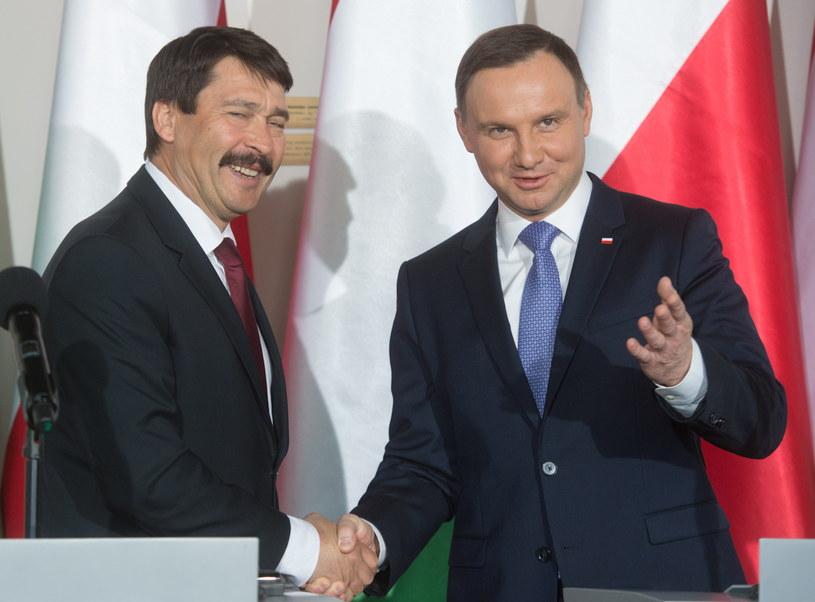 Prezydent Węgier Janos Ader oraz prezydent RP Andrzej Duda /Grzegorz Michałowski /PAP