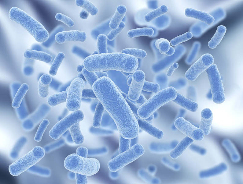probiotyki działanie /© Photogenica