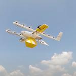 Problemy mieszkańców Australii - ptaki atakują drony dostawcze
