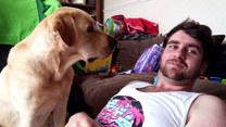 Próbował ignorować psa. Finał?