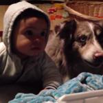 Próbowali nauczyć dziecko mówić. Zwyciężył pies! – wideo