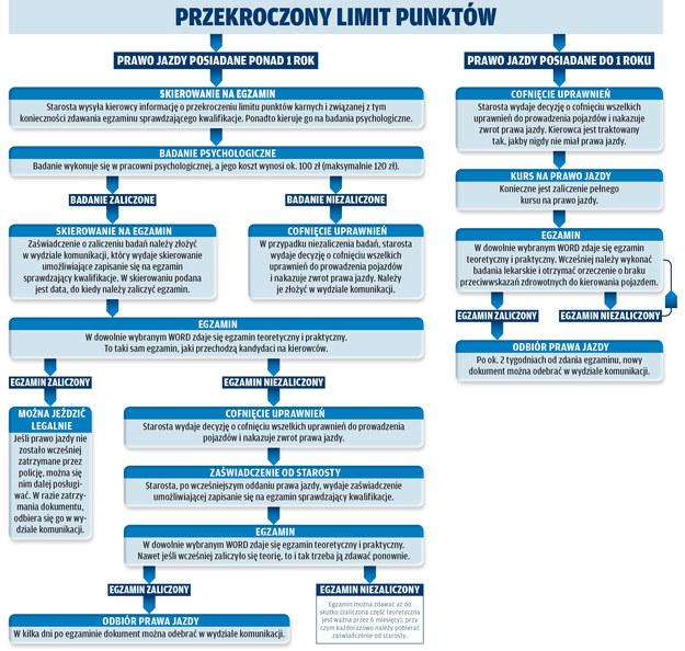 Procedura odzyskania prawa jazdy po przekroczeniu limitu punktów karnych /Motor