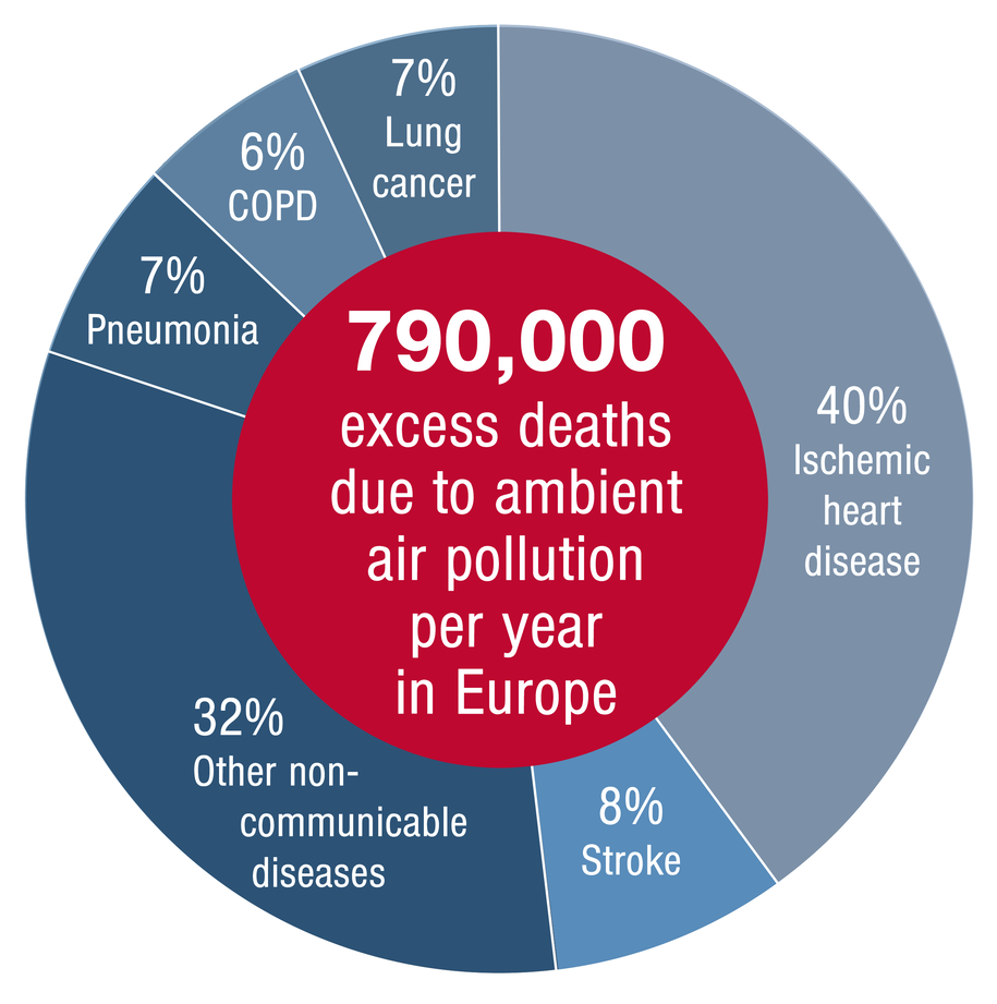 Procentowy udział chorób, prowadzących do śmierci związanej z zanieczyszczeniem powietrza /European Heart Journal /Materiały prasowe