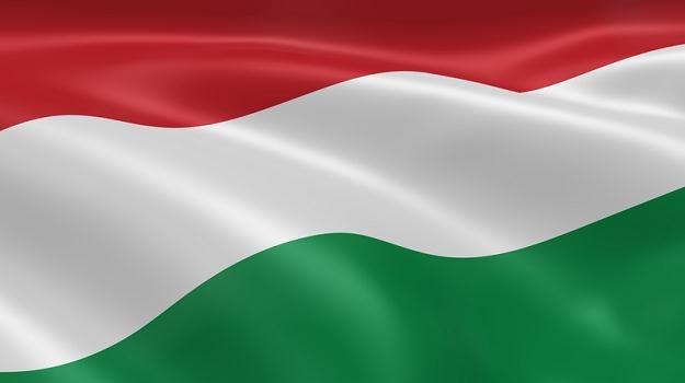 Produkcja przemysłowa Węgier wzrosła w lutym 2012 r. o 0,8 proc. miesiąc do miesiąca /© Panthermedia