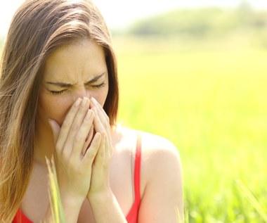 Produkty, które łagodzą objawy alergii