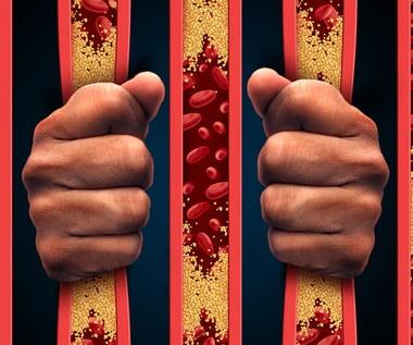 Produkty, które najlepiej oczyszczą tętnice