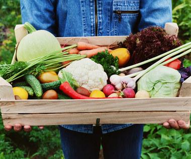 Produkty organiczne: Czym są i dlaczego warto je jeść?