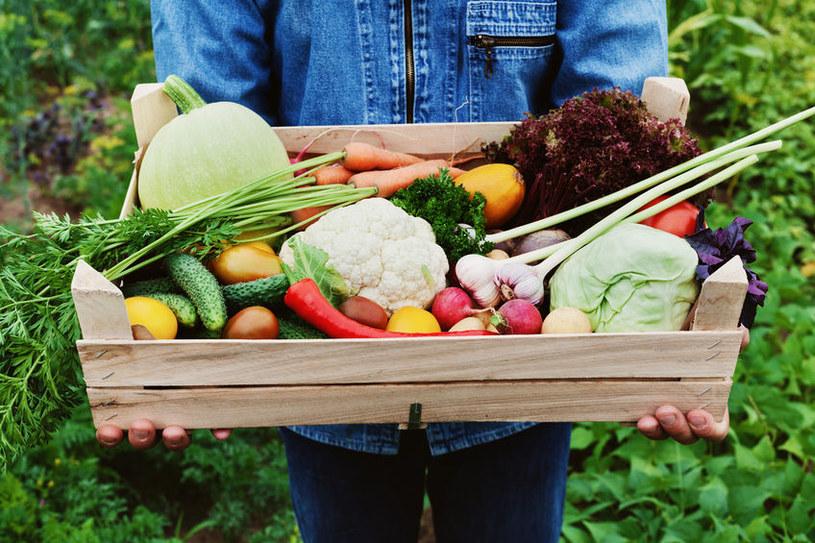 Produkty organiczne są wolne do pestycydów /123RF/PICSEL