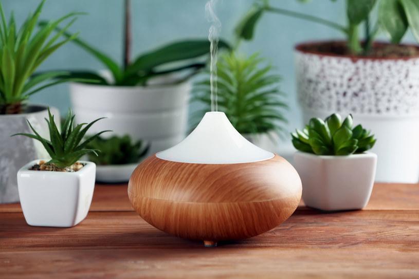 Produkty pochłaniające zapachy i aromatyzujące powietrze mogą zawierać substancje rakotwórcze i silne alergeny /123RF/PICSEL