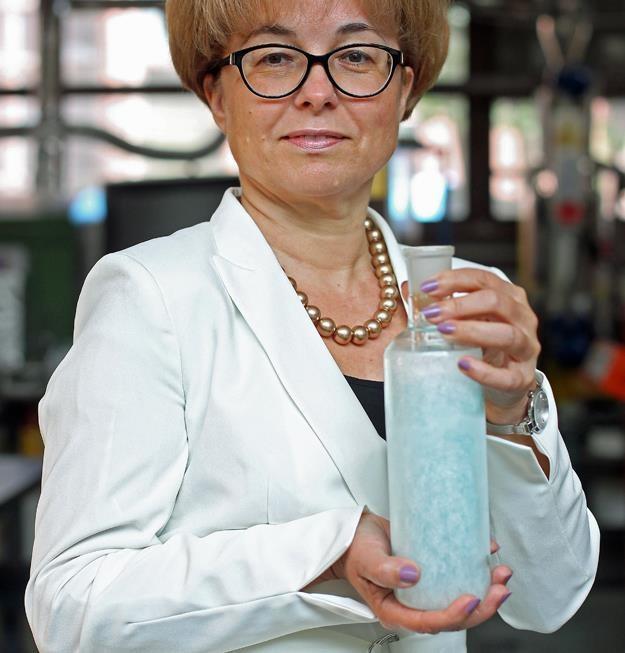 Prof. dr hab. Ewa Klugmann-Radziemska /PAP