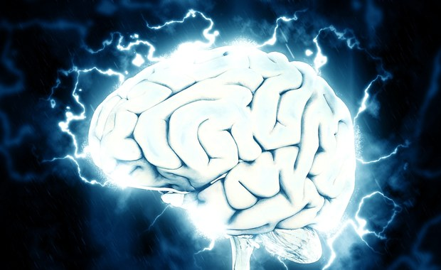 Prof. John-Dylan Haynes: Sztuczna inteligencja nie odbierze nam wolnej woli