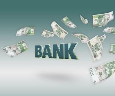 Prof. Leszek Pawłowicz dla Interii: W kryzys bankowy nie wpada się od razu, ale stopniowo