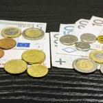 Prof. M. Noga: Polska powinna jak najszybciej wejść do strefy euro. W przeciwnym razie sama zepchnie się na margines