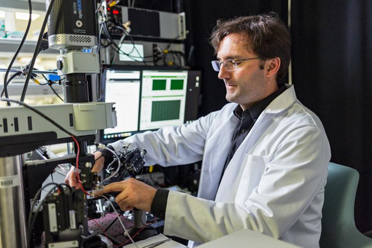 Prof. Martin Paukert z University of Texas Health Science Center w San Antonio /UT Health San Antonio /Materiały prasowe