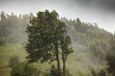 Prognoza pogody na czwartek. Silny wiatr, na Bałtyku sztorm