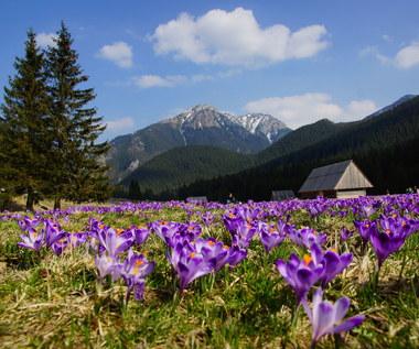 Prognoza pogody na wtorek: Silnie powieje w górach