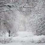 Prognoza pogody: Nadciąga prawdziwa zima