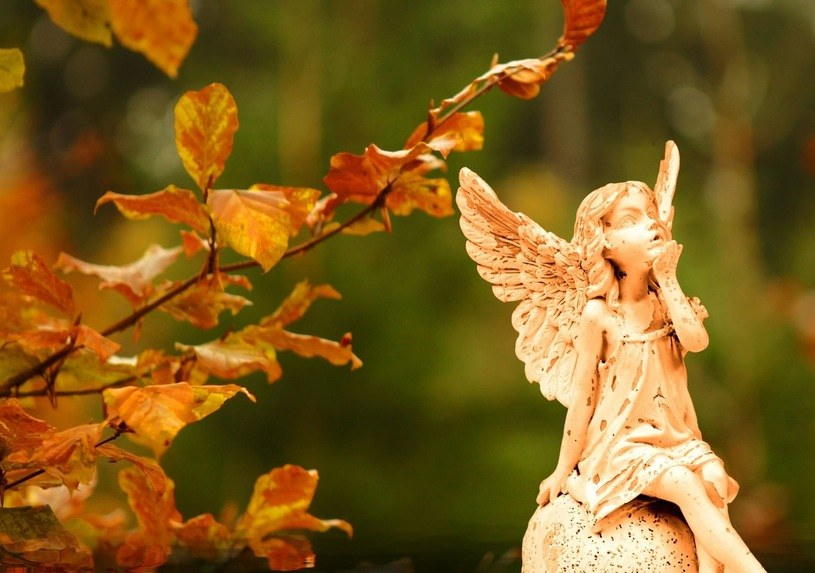 Prognozy na 1 listopada są obiecujące /123RF/PICSEL