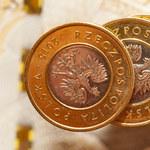 Prognozy walutowe. Złoty odzyska siłę