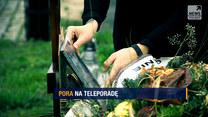 "Program ""Raport"": Wady i zalety teleporad lekarskich"