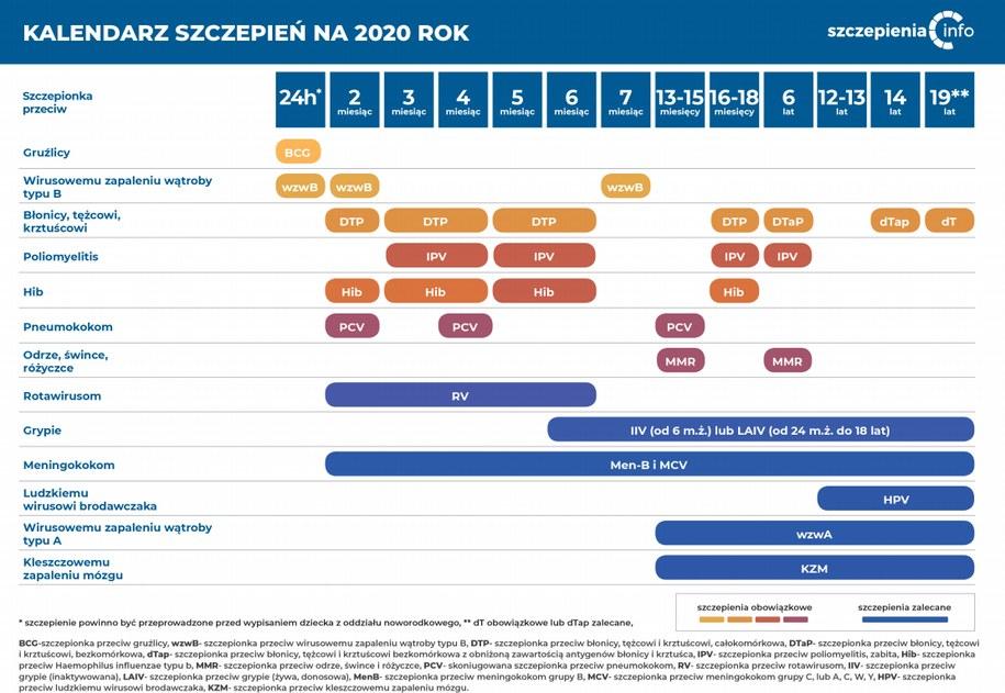 Program Szczepień Ochronnych w 2020 roku /szczepienia.pzh.gov.pl /