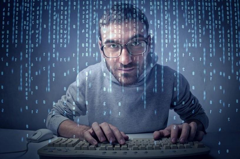 Programista może w Polsce bardzo dużo zarabiać, ale początki kariery nie muszą być łatwe /123RF/PICSEL