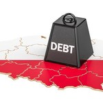 Projekt budżetu na 2020. Ryzyko inflacji i cen energii
