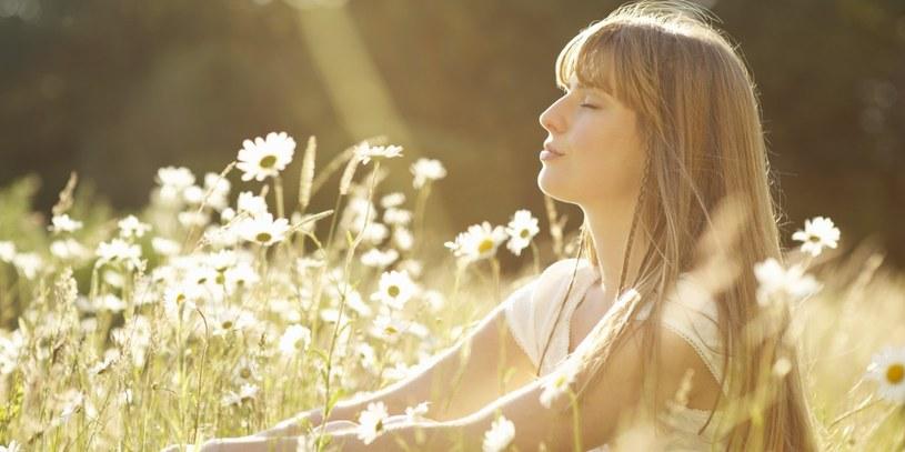 promienie słoneczne /© Photogenica