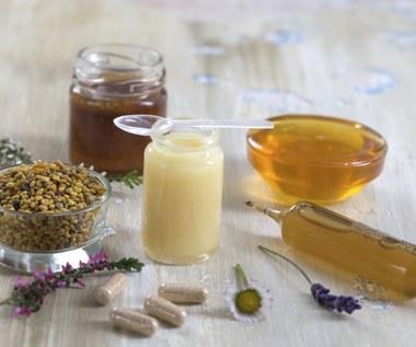 Propolis: Naturalny antybiotyk i skuteczny kosmetyk