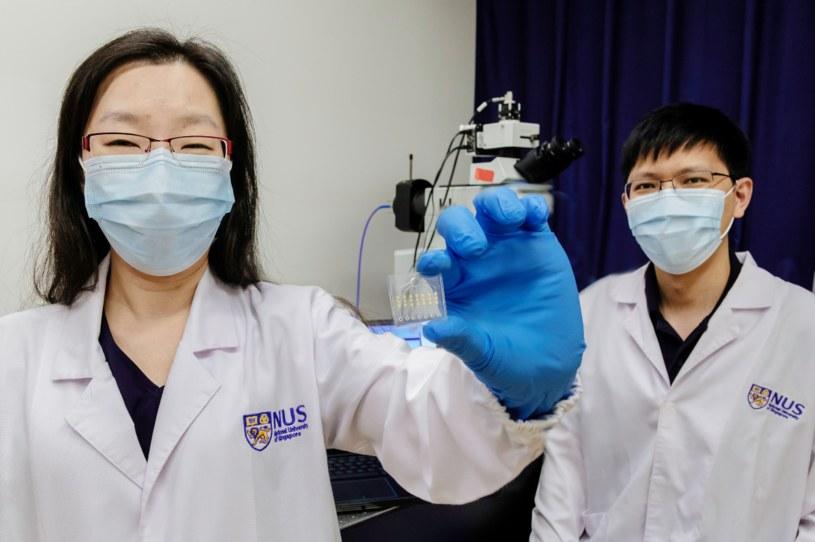 Prosty test podpowie, czy dobrze leczymy dany nowotwór /materiały prasowe