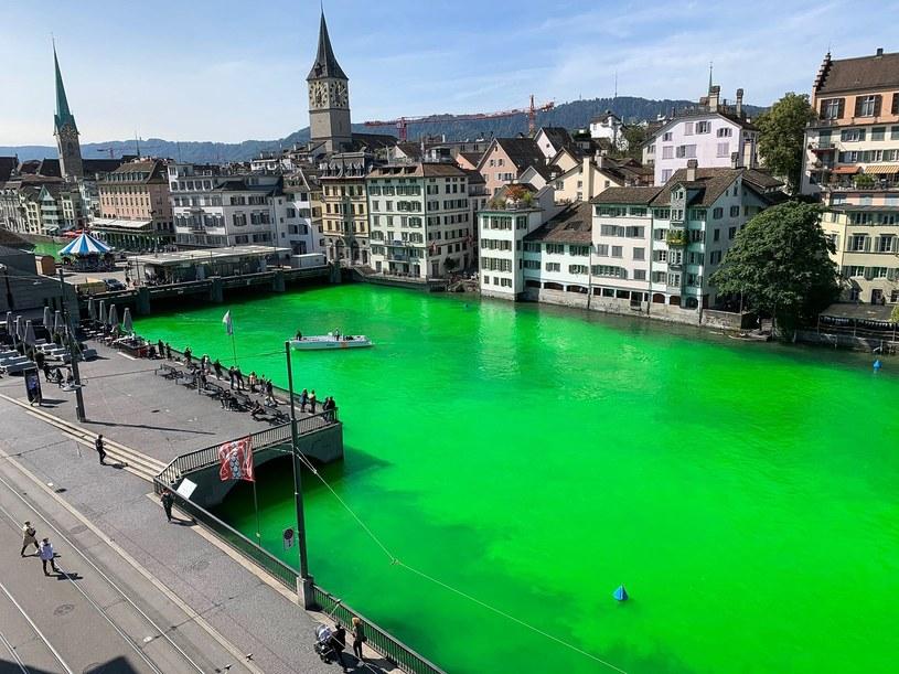 Protest działaczy Extinction Rebellion w Zurychu /HANDOUT / Stadtpolizei Zurich / AFP /East News