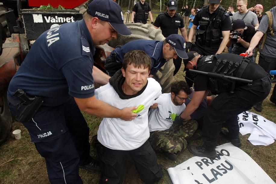 Protest Greenpeace i Fundacji Dzika Polska 8 czerwca /Artur Reszko /PAP