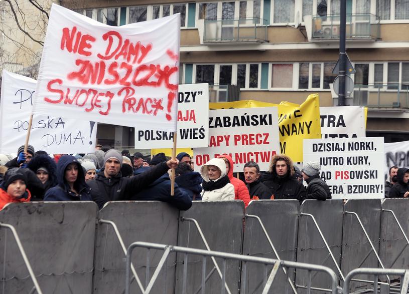 Protest hodowców zwierząt futerkowych przed Sejmem, grudzień 2017 /Jan Bielecki /East News