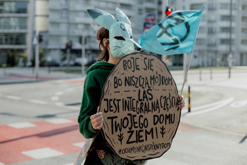 Protest na ul. Grójeckiej w Warszawie, przed siedzibą Lasów Państwowych. /Extinction Rebellion