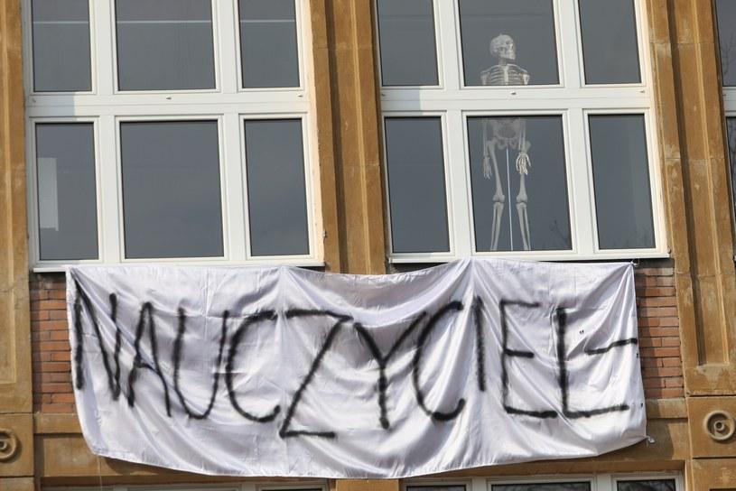 Protest nauczycieli w Warszawie /Tomasz Jastrzębowski /Reporter