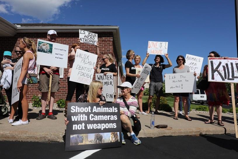 Protest po zabiciu lwa Cecila /Adam Bettcher /AFP