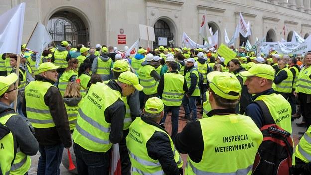 Protest pracowników inspekcji weterynaryjnej /Marcin Obara /PAP