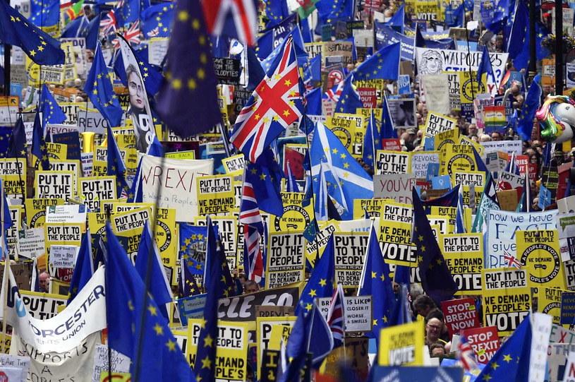 Protest przeciwko brexitowi /NEIL HALL /PAP/EPA