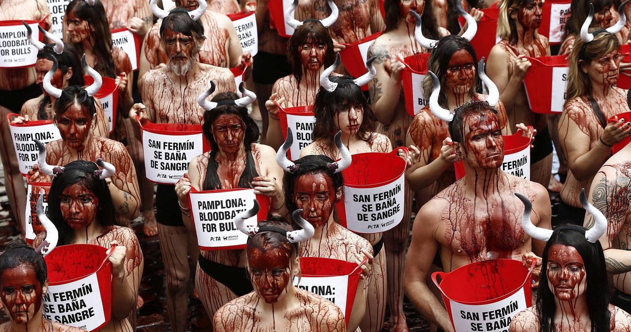 Protest przeciwko słynnym hiszpańskim gonitwom byków
