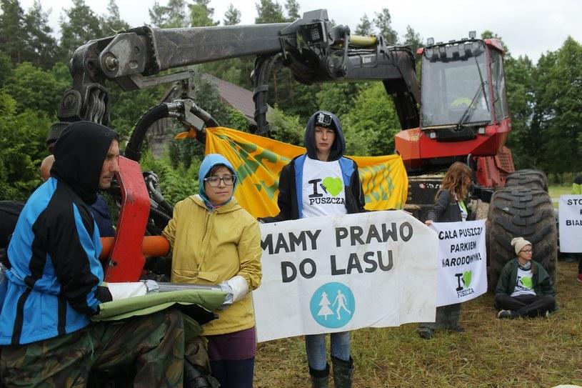 Protest w obronie Puszczy Białowieskiej zorganizowany przez aktywistów Greenpeace i Fundacji Dzika Polska /Piotr Mecik /East News