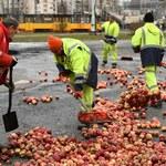 Protest w Warszawie. Kolejni rolnicy mają usłyszeć zarzuty