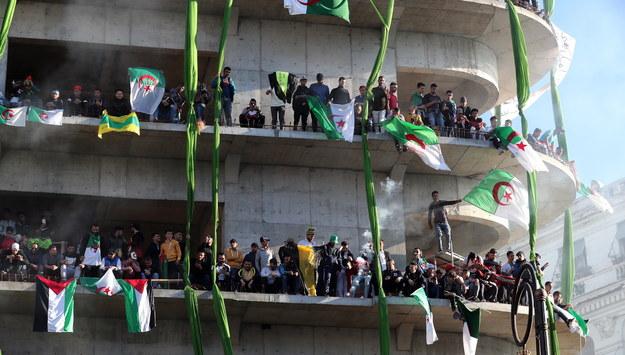 Protestujący w Algierze /MOHAMED MESSARA /PAP/EPA
