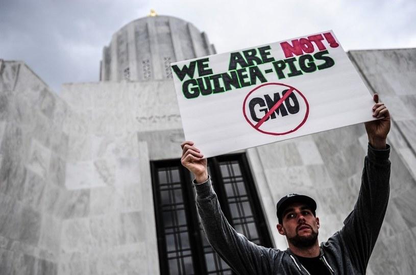 Protesty przeciw GMO nie ustają. Żywność modyfikowana genetycznie ma niewielu zwolenników /East News