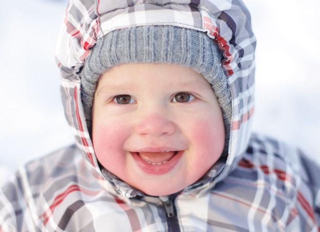 Przebywając na świeżym powietrzu, maluch dotlenia się i przyzwyczaja do niższych temperatur. /123RF/PICSEL