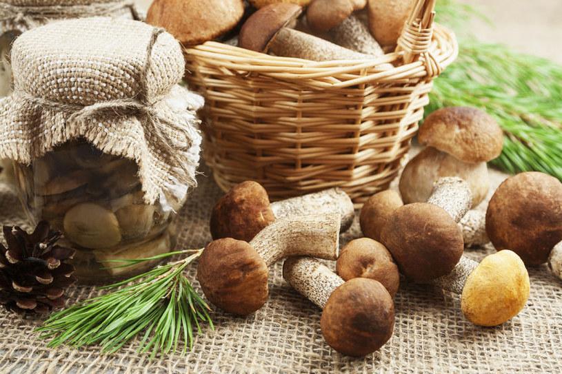 Przechowywanie grzybów /©123RF/PICSEL