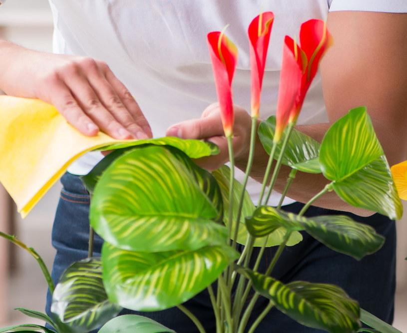 Przecieranie roślin /©123RF/PICSEL