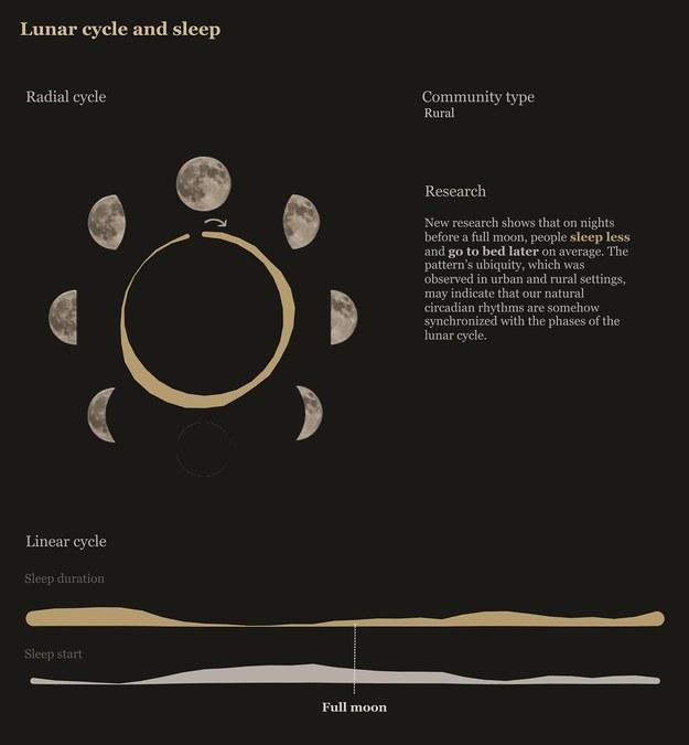 Przeciętna długość snu i pora zasypiania w zależności od faz Księżyca /Rebecca Gourley/University of Washington /Materiały prasowe